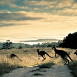 Best-Natural-Attractions-In-Australia